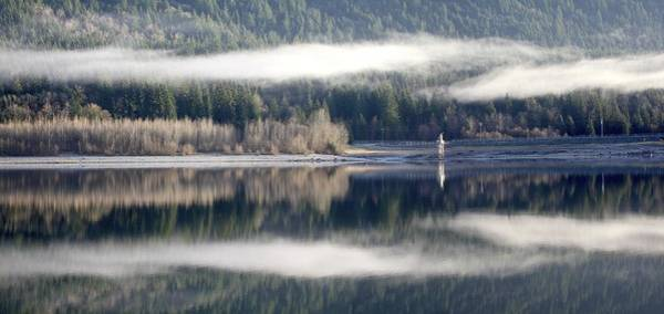 Alouette Wall Art - Photograph - Alouette Fog - Golden Ears Prov. Park, British Columbia by Ian Mcadie