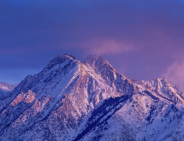 Uinta Photograph - Alpenglow On Mount Olympus by Howie Garber