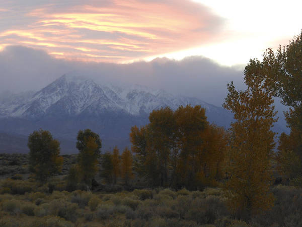 Photograph - Alpenglow Over Mt Tom by Don Kreuter
