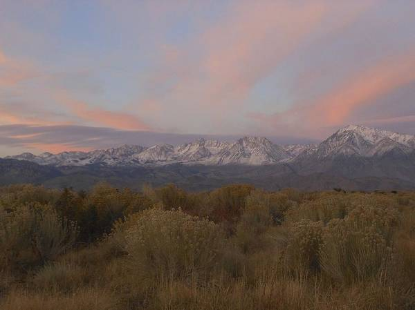 Photograph - Alpenglow Owens Valley by Don Kreuter