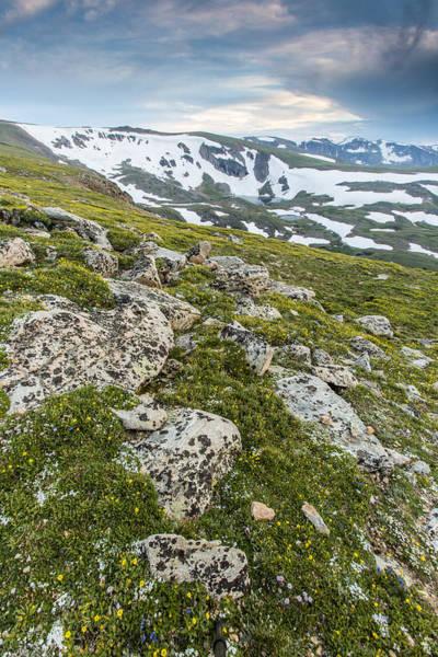 Photograph - Alpine Dusk by D Robert Franz