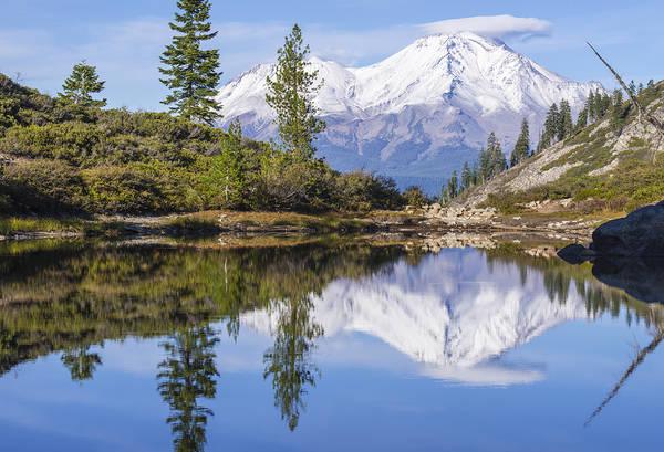 Photograph - Alpine Majesty by Loree Johnson