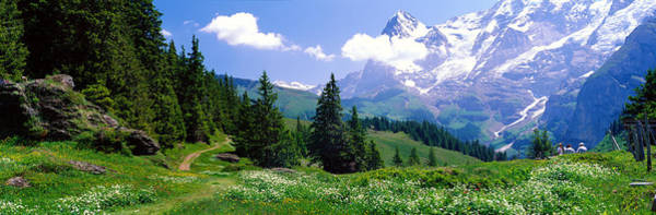 Alpine Scene Near Murren Switzerland Art Print