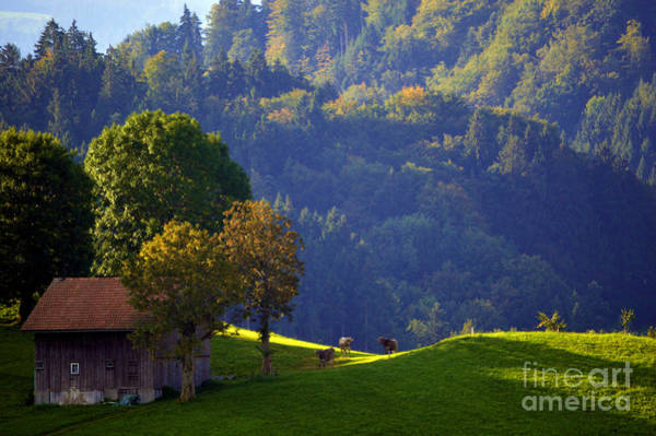 Photograph - Alpine Summer Scene In Switzerland by Susanne Van Hulst