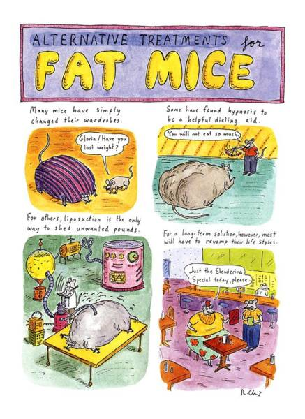 Illustration Drawing - Alternative Treatments For Fat Mice by Roz Chast