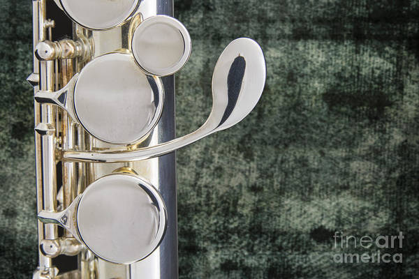 Photograph - Alto Flute Instrument G Keys Photograph In Color 3456.02 by M K Miller