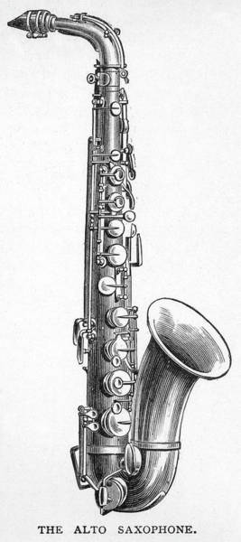 Sax Drawing - Alto Saxophone  One Of A  Family by Mary Evans Picture Library