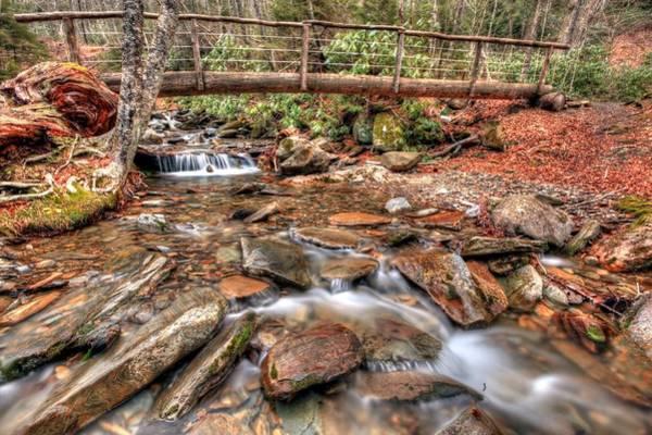 Photograph - Alum Cave Trail Bridge by Doug McPherson