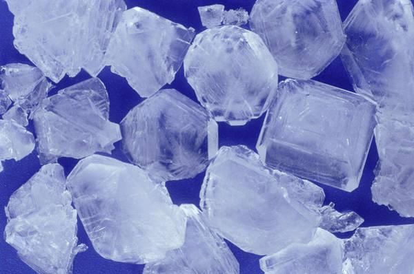 Uncut Photograph - Alum Crystals by Adam Hart-davis/science Photo Library