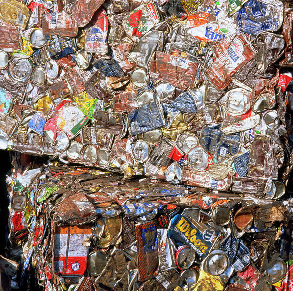 Aluminium Cans For Recycling Art Print by Alex Bartel/science Photo Library