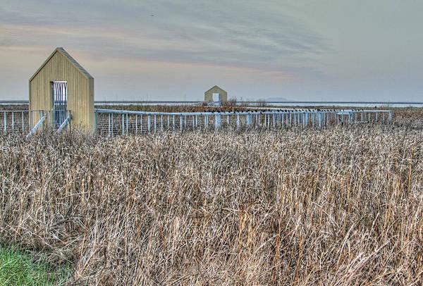 Alviso Photograph - Alviso Marsh  California  by Peri Ann Taylor