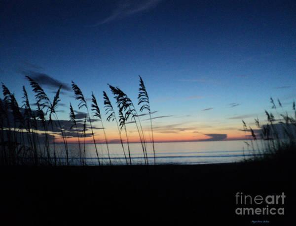 Photograph - Always In Season by Megan Dirsa-DuBois