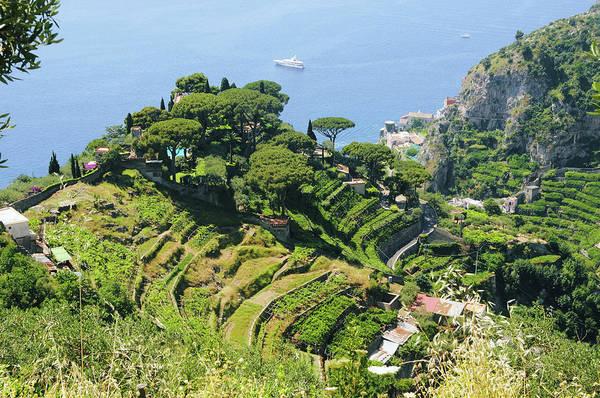 Bougainvillea Photograph - Amalfi Coast Terraces by Digistu