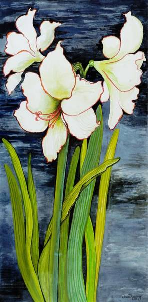 Night Life Painting - Amaryllis Against A Night Sky by Joan Thewsey