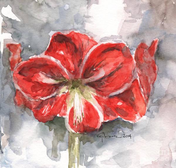 Amaryllis Painting - Amaryllis by Claudia Hafner