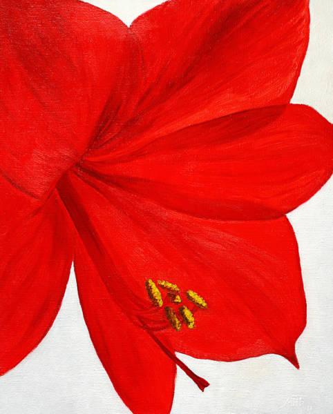 Red Amaryllis Painting - Amaryllis Flower by Masha Batkova