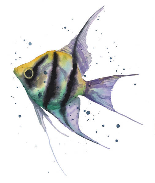 Wall Art - Painting - Amazing Angelfish by Alison Fennell