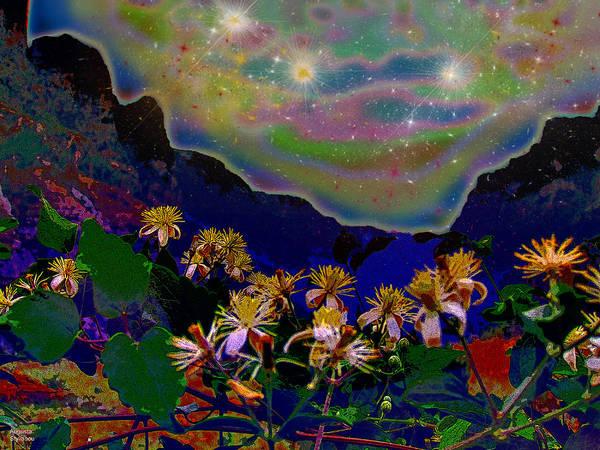 Digital Art - Amazing Starry Landscape by Augusta Stylianou
