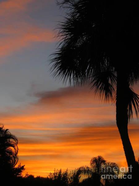 Amazing Sunrise In Florida Art Print