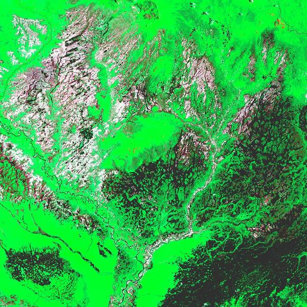 Wall Art - Photograph - Amazon Rivers by Nasa/science Photo Library