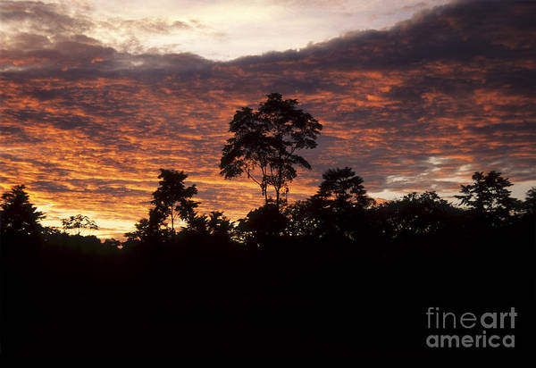 Photograph - Amazon Sunset by James Brunker