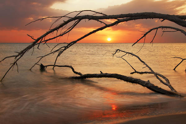 Photograph - Amber Sunset by Gouzel -