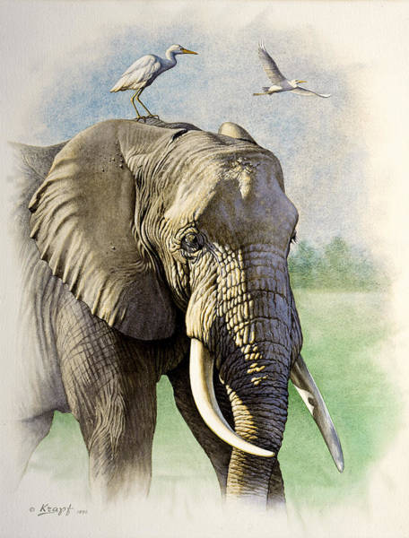 Wall Art - Painting - Amboseli Morning   by Paul Krapf