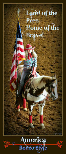 Palomino Photograph - America -- Rodeo-style by Stephen Stookey