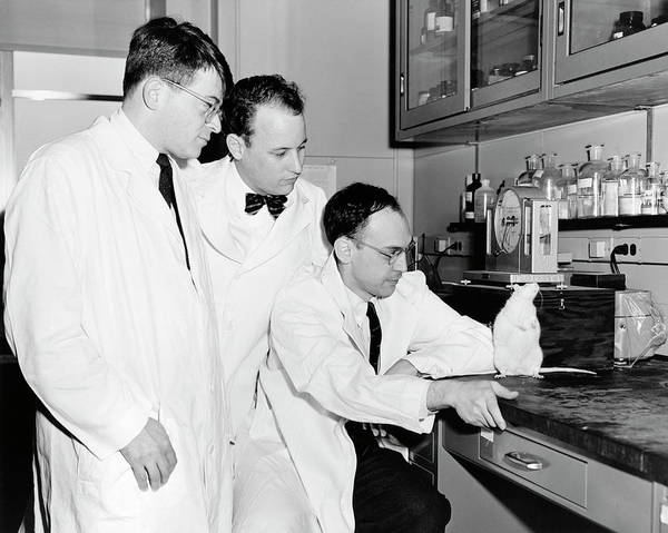 Donald Photograph - American Biomedical Researchers by National Library Of Medicine