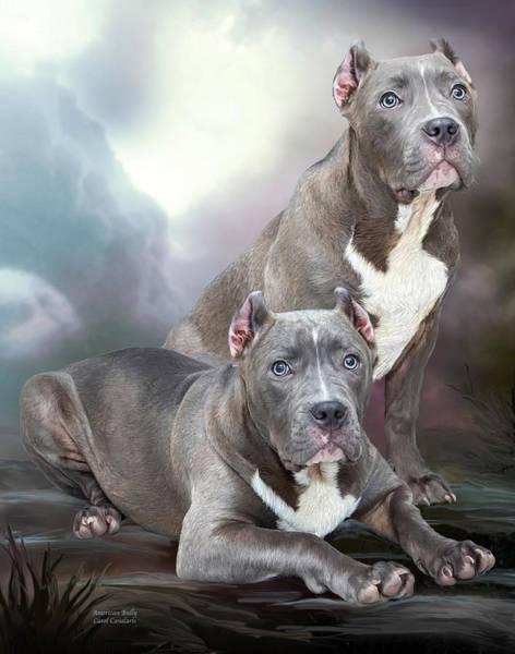 Canine Mixed Media - American Bully by Carol Cavalaris