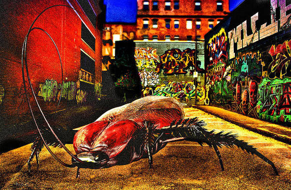 Wall Art - Digital Art - American Cockroach by Bob Orsillo