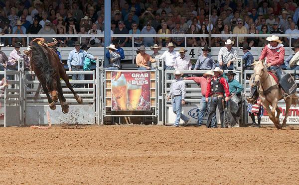 Prca Wall Art - Photograph - American Cowboy Bucking Rodeo Bronc by Sally Rockefeller