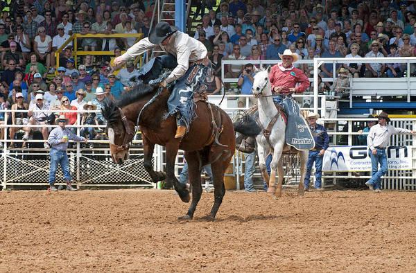 Prca Wall Art - Photograph - American Cowboy Riding Bucking Rodeo Bronc II by Sally Rockefeller