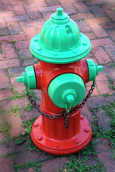 Water Hydrant Photograph - American Fire Hydrant by Tony Craddock/science Photo Library
