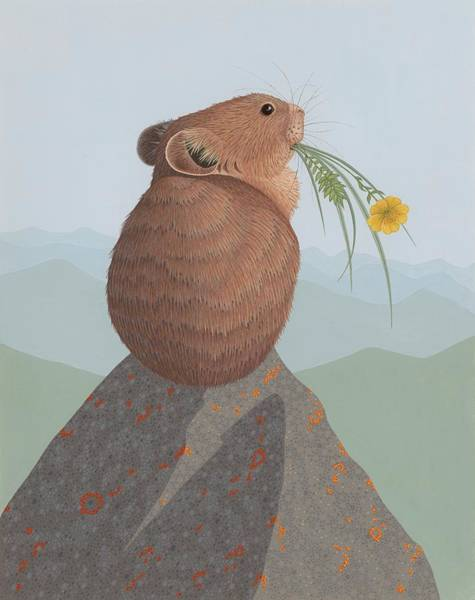 Wall Art - Painting - American Pika by Nathan Marcy