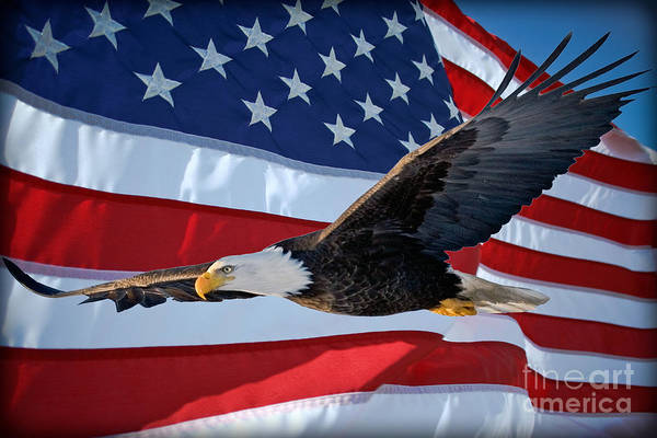 Photograph - American Proud by Gary Keesler