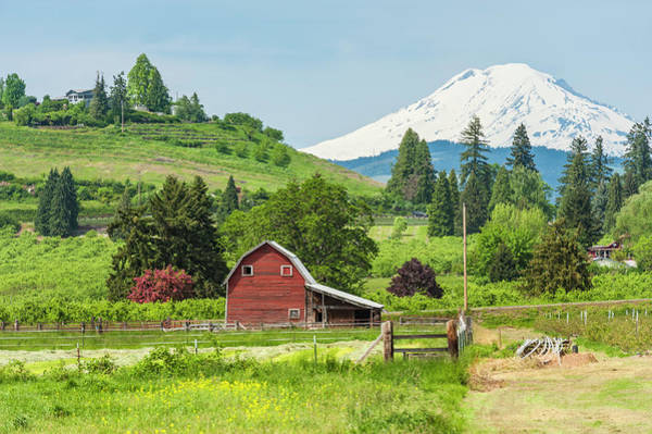 Mt. Adams Photograph - American Red Barn In Green Farmland by Fotovoyager