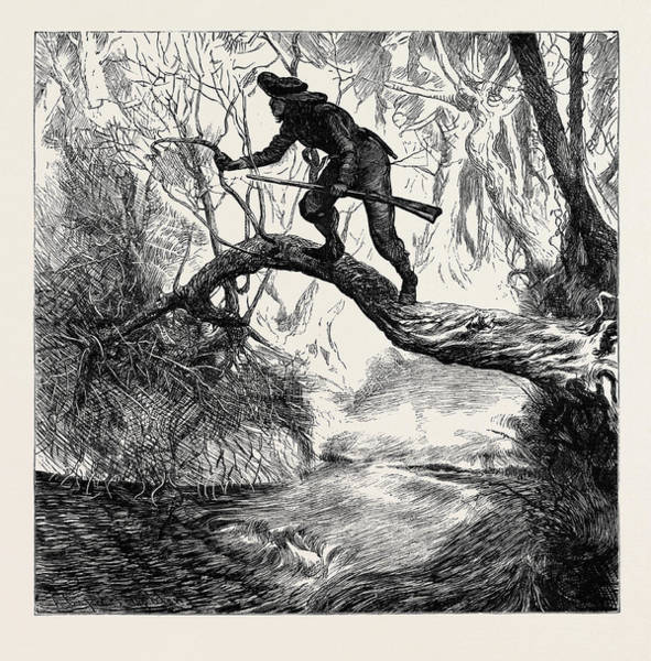 Backwoods Wall Art - Drawing - American Sketches On The Scout by English School