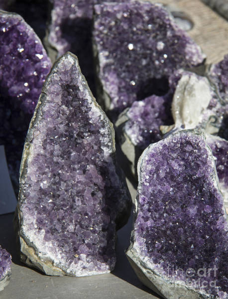 Wall Art - Photograph - Amethyst Geode Pieces by Teresa Mucha