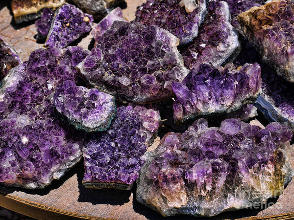Photograph - Amethyst Jewels by Brenda Kean