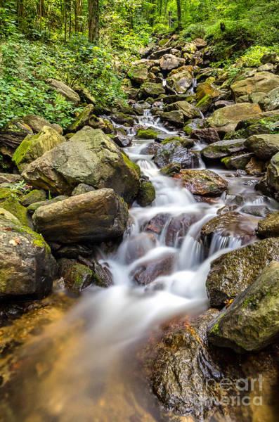 Photograph - Amicalola Falls by Bernd Laeschke