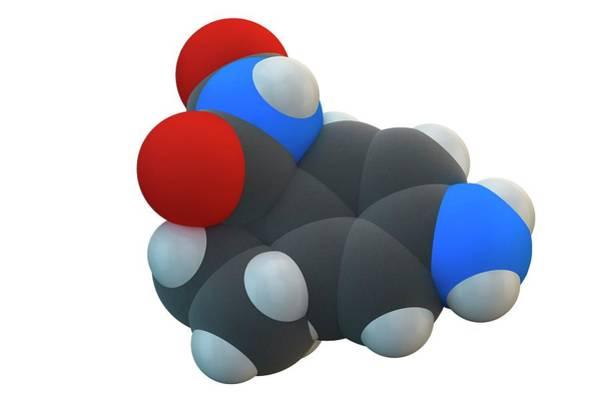 Molecular Wall Art - Photograph - Aminoglutethimide Anti-steroid Molecule by Ella Maru Studio / Science Photo Library