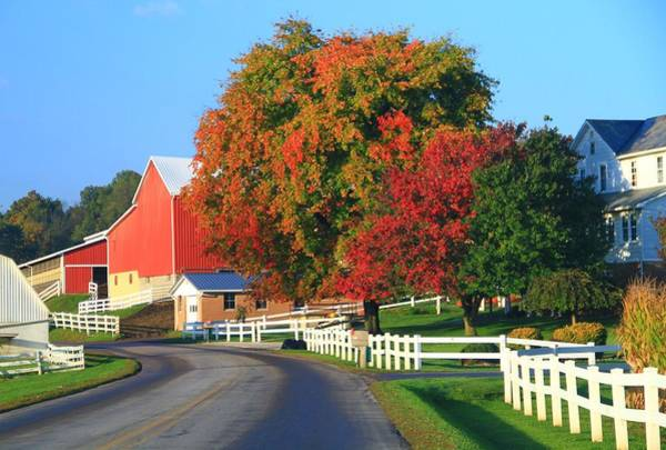 Wall Art - Photograph - Amish Barn In Autumn by Dan Sproul