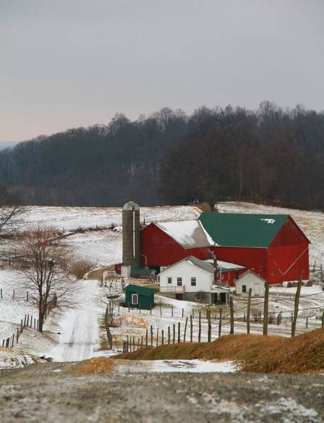 Photograph - Amish Barn In Winter by Dan Sproul