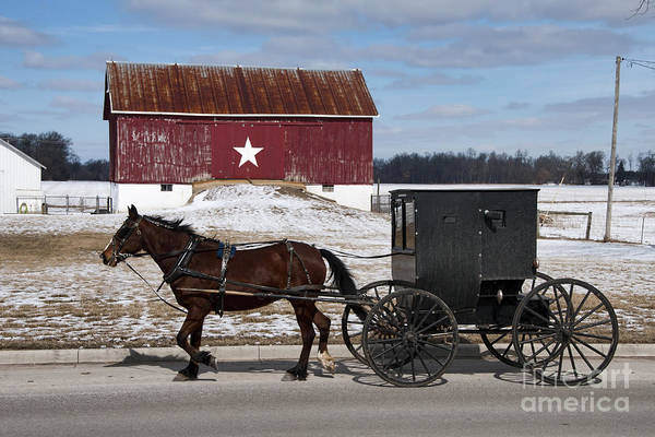 Wall Art - Photograph - Amish Buggy And The Star Barn by David Arment