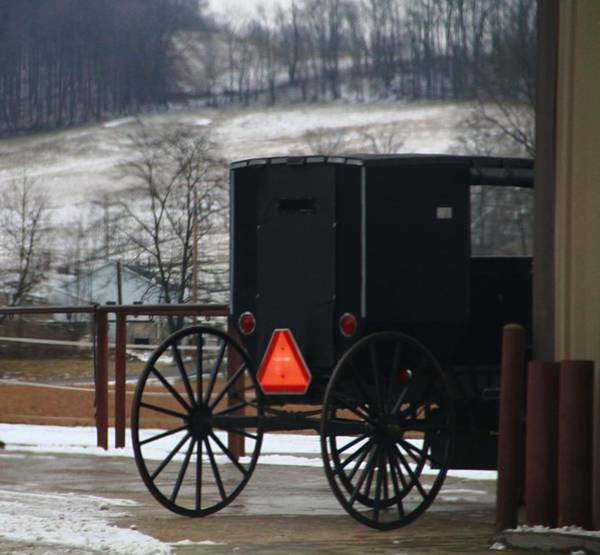 Berlin Ohio Photograph - Amish Buggy In Winter by Dan Sproul