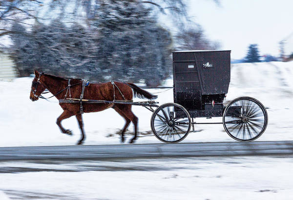 Photograph - Amish Buggy In Winter by Pete Hendley