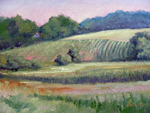 Painting - Amish Corn by Judy Fischer Walton