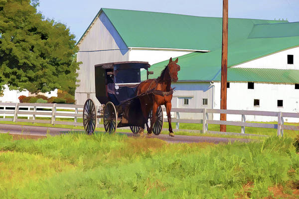 Photograph - Amish Country by Jack R Perry