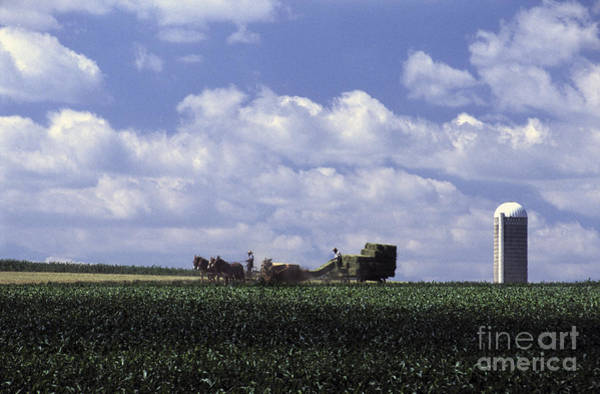 Photograph - Amish Country by Paul W Faust -  Impressions of Light